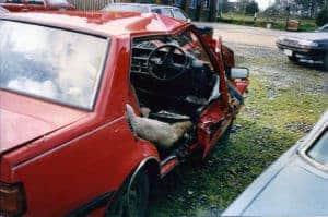 Anna's Car Wreck - Trauma