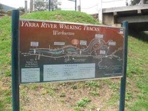 Let's start at the very beginning - Warburton Yarra River Walking Tracks