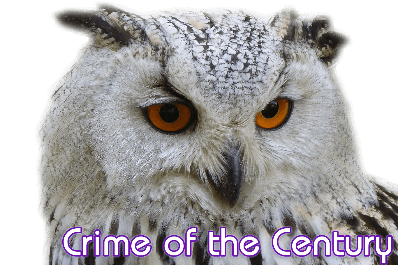 Mikky Eagle - Crime of the Century